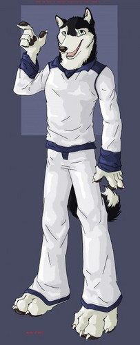 Sonic Fan Characters wallpaper entitled Spades The Husky