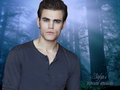 Stefan's exposed emotions - stefan-salvatore wallpaper