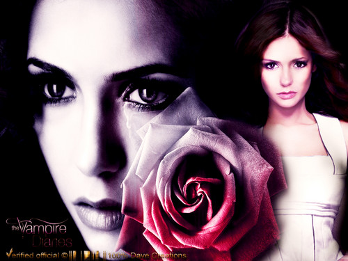 TVD by DaVe!!! - the-vampire-diaries Wallpaper