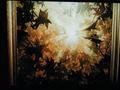 The Last Leaf/Ultimum Folium