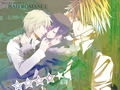 Wallpaper~ - shizaya photo