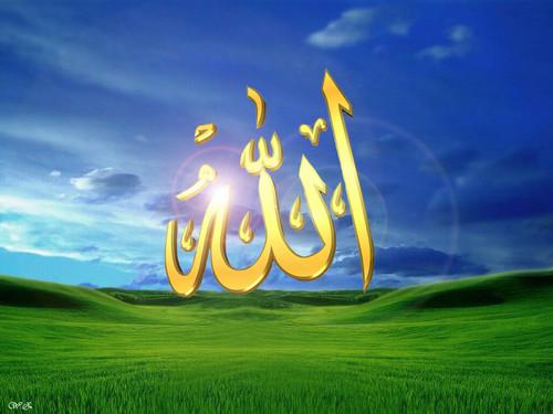 Islam kertas dinding entitled allah