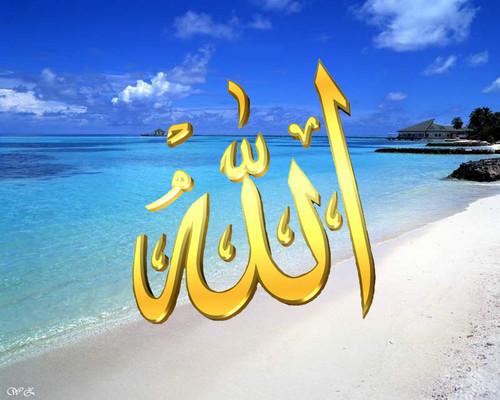 Islam wallpaper entitled allah