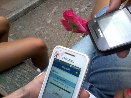 꽃 in the telephone