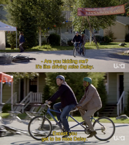 Psych wallpaper containing a bicycle built for two and a bicycling called psych