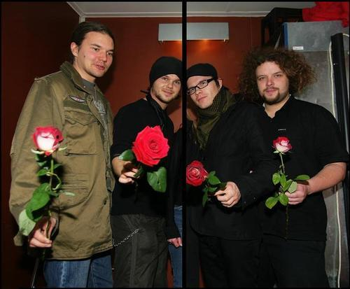 red roses from The Rasmus !