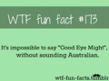 tumblr facts