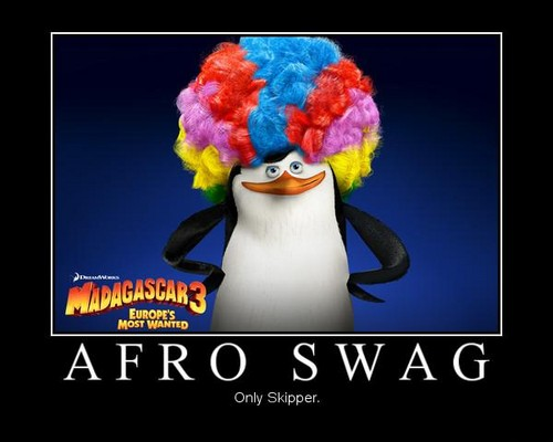 Afro Swag - penguins-of-madagascar Photo
