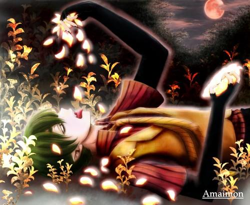 Amaimon