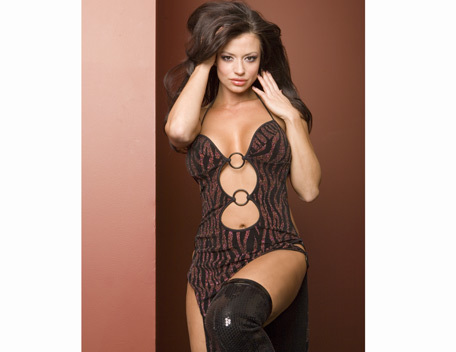 Candice Michelle achtergrond containing a leotard and a bustier entitled Candice Michelle Photoshoot Flashback