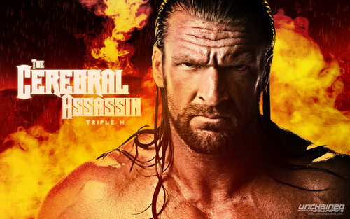 WWE wallpaper containing anime and a fire titled Cerebral Assasin