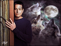 Chakotay - chakotay wallpaper