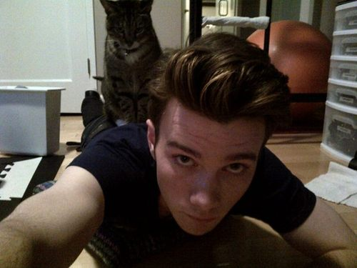 Chris Colfer wallpaper possibly with a cat, a kitten, and a sign called Chris Colfer