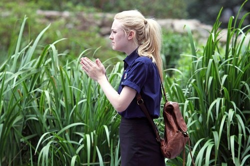 "Dakota Fanning wallpaper with a grainfield, cultivated rice, and a corn called Dakota Fanning On Set of ""Very Good Girls"" [July 19, 2012]"