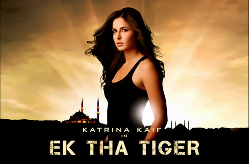 Bollywood wallpaper probably containing attractiveness, a bustier, and a portrait titled Ek Tha Tiger 2