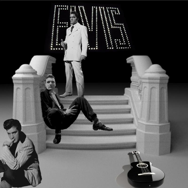 Elvis: Exit Stage Left
