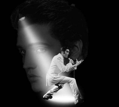 Elvis: In The Spotlight