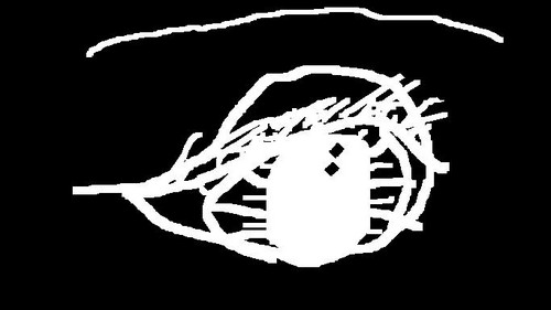 Eyeballlll that I drew on the computer.XP