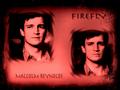 Firefly Wallpaper - firefly wallpaper