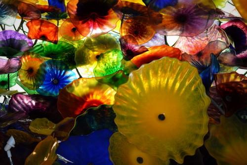 Flowered Glass