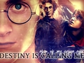 harry-james-potter - Harry Potter wallpaper