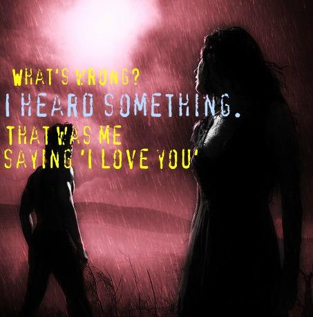Hush hush quote