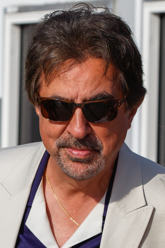 Joe - Joe Mantegna Photo (31630225) - Fanpop