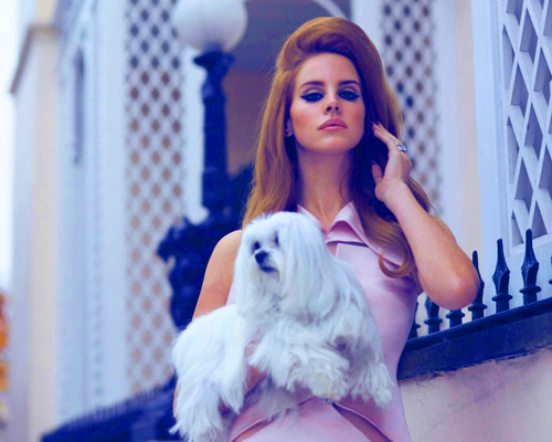 Lana Del Rey karatasi la kupamba ukuta containing a maltese dog entitled Lana♦