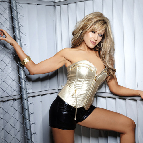 Lilian Garcia wallpaper containing a chainlink fence entitled Lilian Garcia