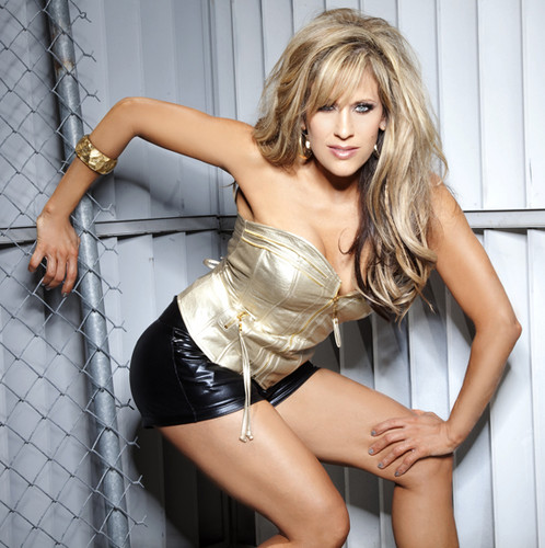 diva wwe wallpaper with a chainlink fence titled Lilian Garcia
