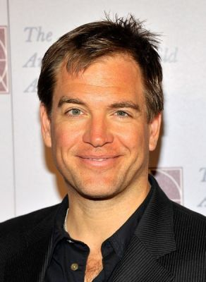 Michael Weatherly wallpaper containing a portrait called Michael Weatherly