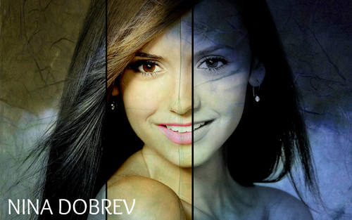 Nina Dobrev - the-vampire-diaries Wallpaper