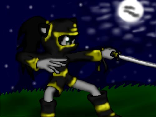 Ninja Stacie