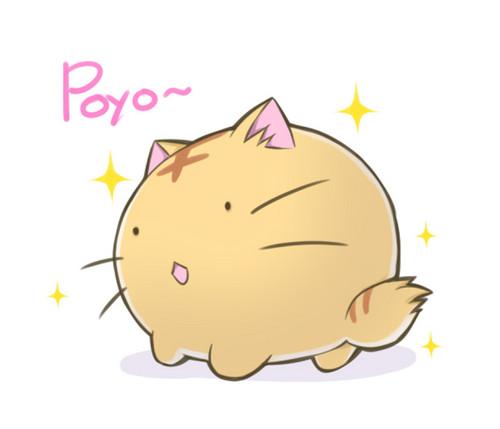Poyopoyo