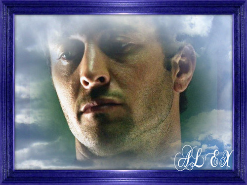 Alex O'Loughlin wallpaper called STEVE