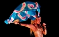shakira - Shakira wallpaper