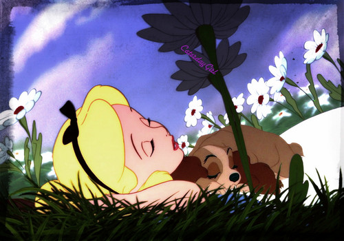 Sleeping in the Medow