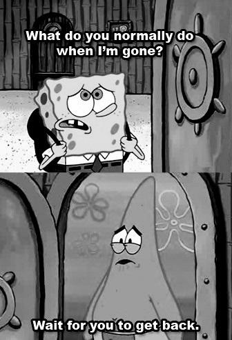 Sponge & Pat