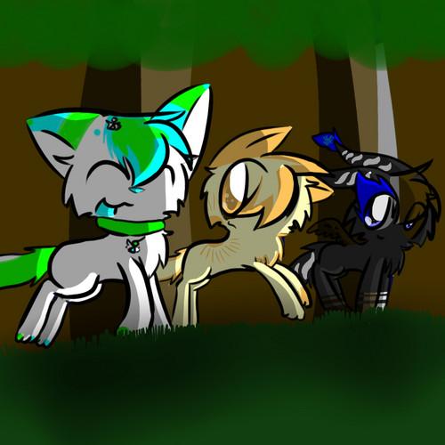 Stella, Citrus and Draksu