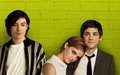 The Perks of Being a Wallflower - logan-lerman wallpaper