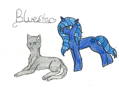Warriors to My Little Pony:Bluestar