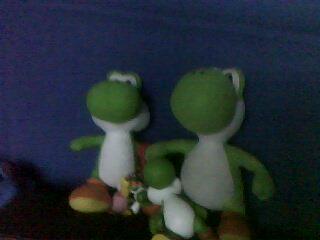 Yoshi's Family
