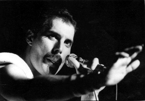 awesome Freddie