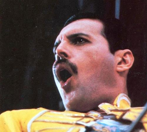 awesome Freddie