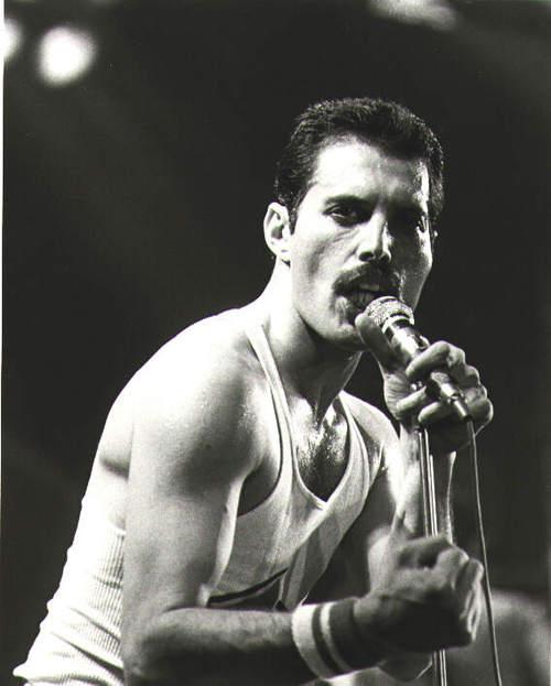 black & white Freddie pics.