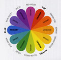 color-wheel - colors photo