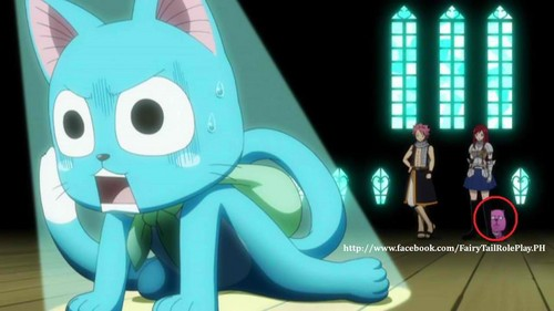 fairy tail weird creatures !