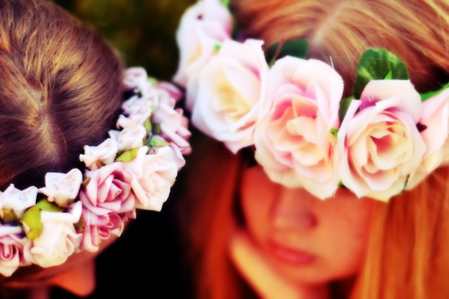 Photography Fan wallpaper with a bouquet, a camellia, and a rose entitled friendship-girls