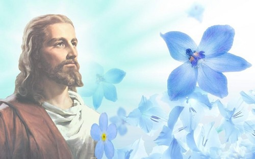 যীশু দেওয়ালপত্র possibly with a bouquet and a hippeastrum called jesus...a miracle