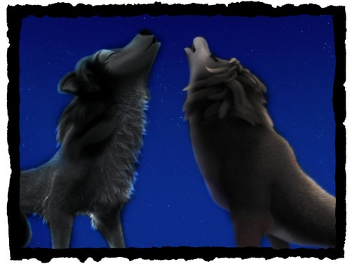 me and my mate howling